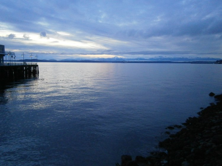 View from Olympic Sculpture Park
