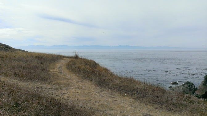 Trails at Iceberg Point on Lopez Island