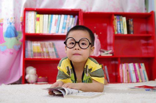 adorable-blur-bookcase-books-261895